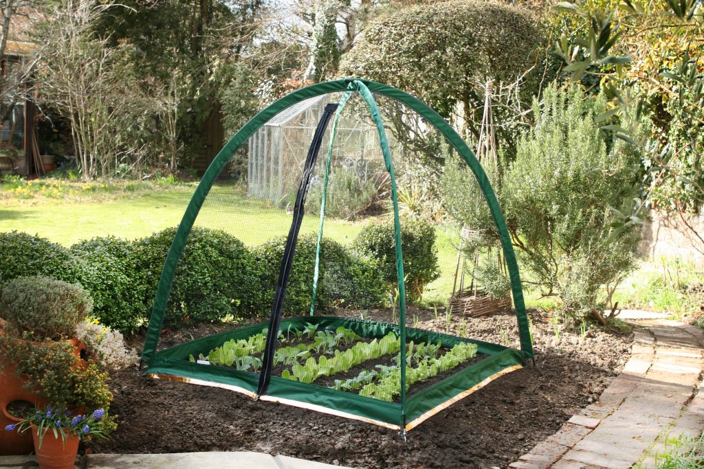 pest protection for garden